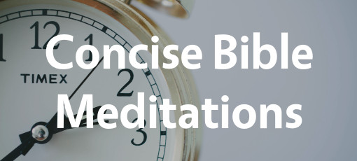 Concise Bible Meditations