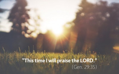 January 28th: Bible Meditation for Genesis 29
