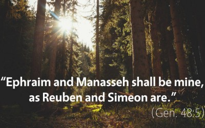 February 15th: Bible Meditation for Genesis 48