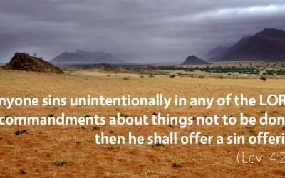 April 1st: Bible Meditation for Leviticus 4