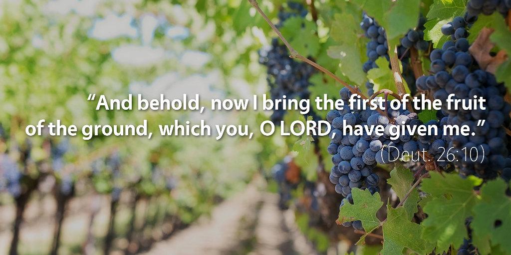 June 21st: Bible Meditation for Deuteronomy 26
