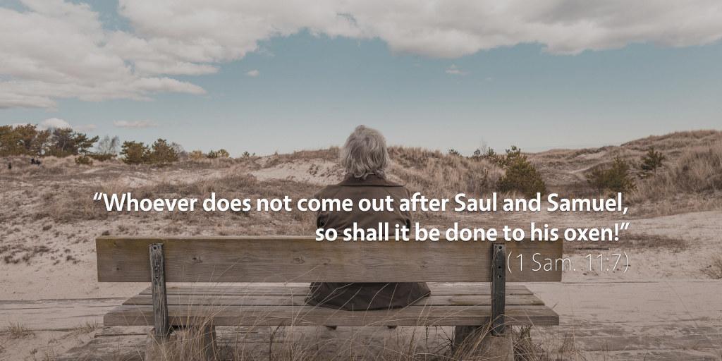 August 19th: Bible Meditation for 1 Samuel 11