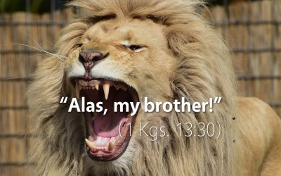 October 10th: Bible Meditation for 1 Kings 13