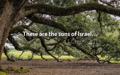 November 13th: Bible Meditation for 1 Chronicles 1–2