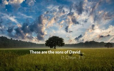 November 14th: Bible Meditation for 1 Chronicles 3–4