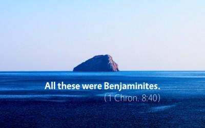 November 16th: Bible Meditation for 1 Chronicles 7–8